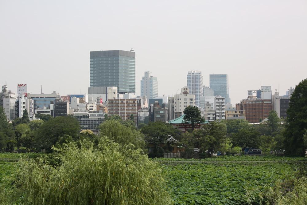 上野 ef70-300mmF4-56-is-2-usmレビュー18