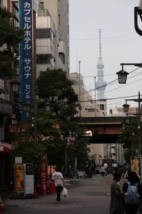 上野 ef70-300mmF4-56-is-2-usmレビュー33