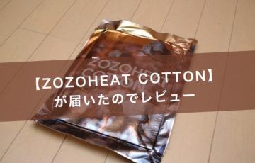ゾゾヒートコットン12