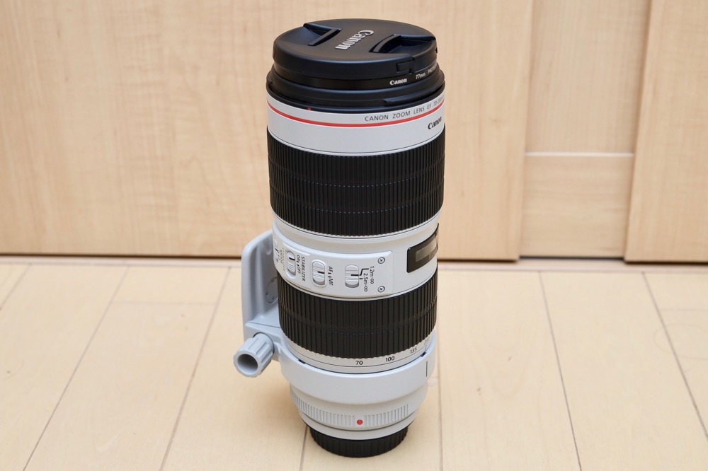 Canon EF70-200mm F2.8L IS III USM モニター12