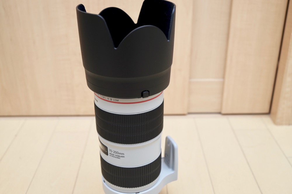 Canon EF70-200mm F2.8L IS III USM モニター13