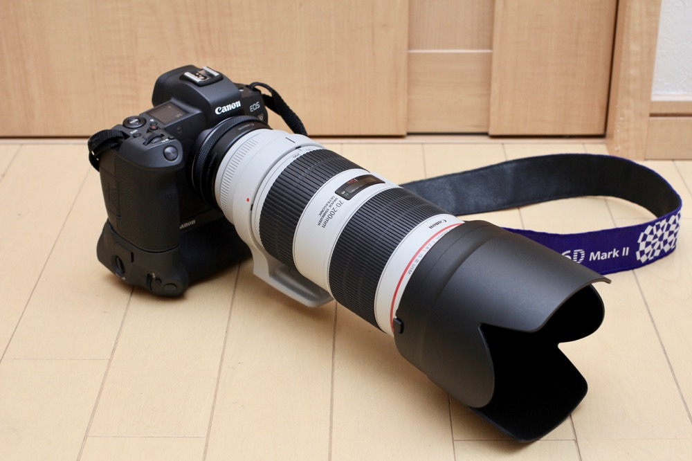 Canon EF70-200mm F2.8L IS III USM モニター15